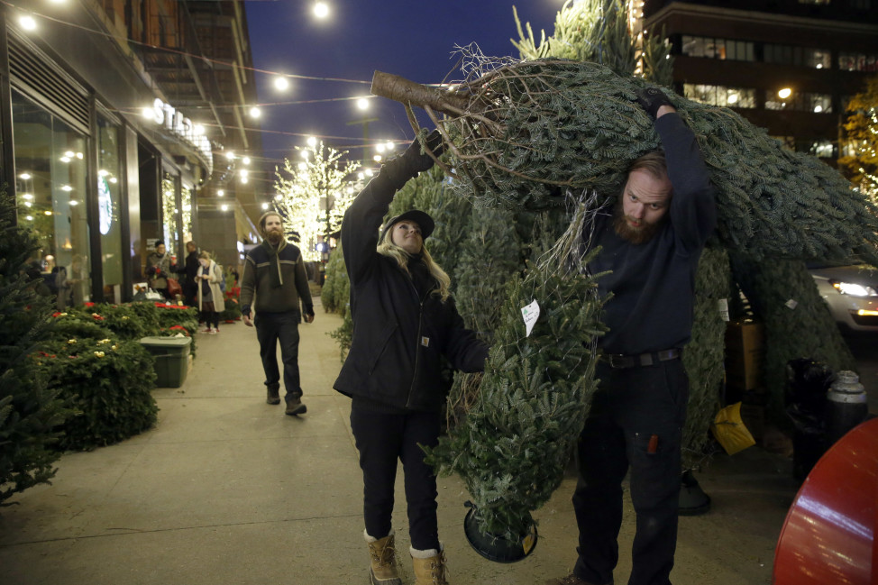 Christmas tree vendors in New York City. (AP Photo)
