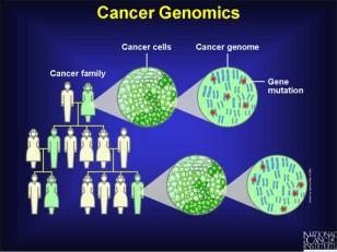 Xərçəngin genlərlə sıx əlaqəsi var.