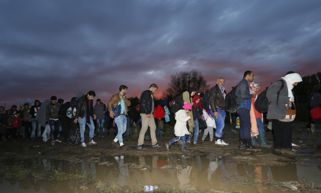 Migrants make their way after crossing the border at Zakany
