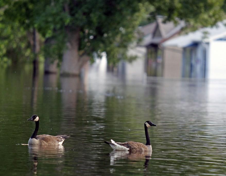 U.S. Flooding