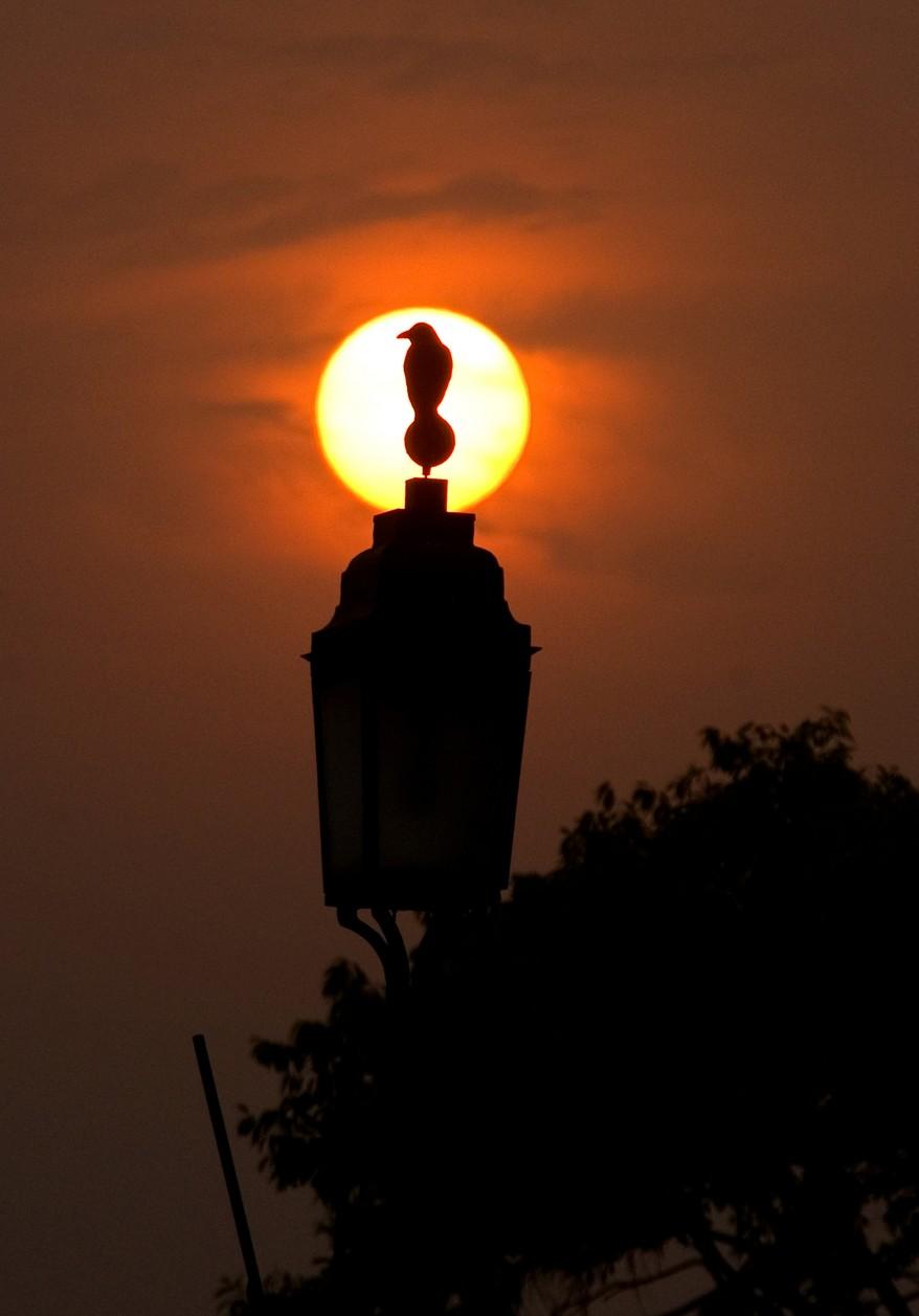 """India Sunset"""