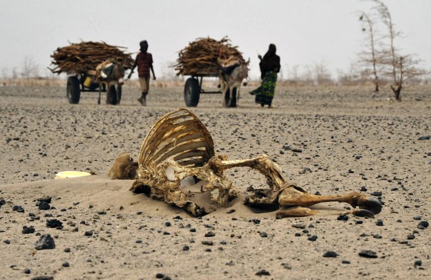 """Kenya Drought"""