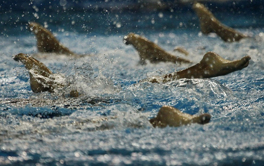 """""""China Swimming World Championships"""""""