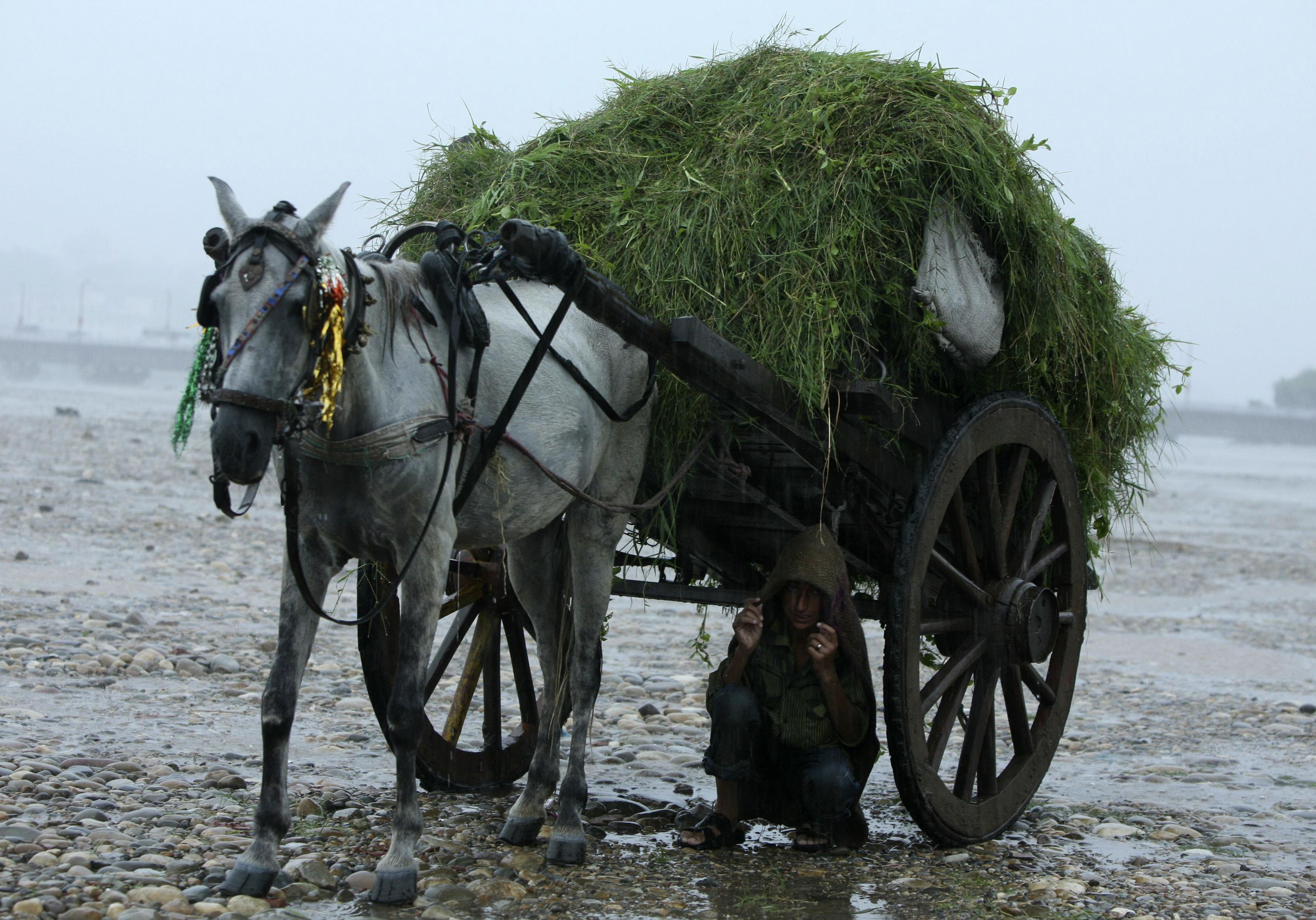 Reuters Jammu India rain 12aug11