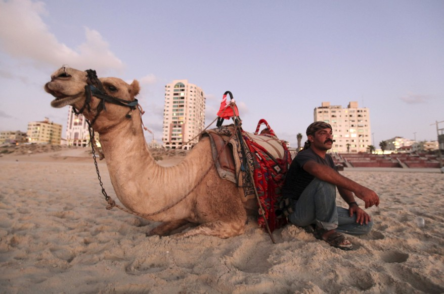 A Palestinian sits next to his camel on the beach in Gaza City. (Reuters)