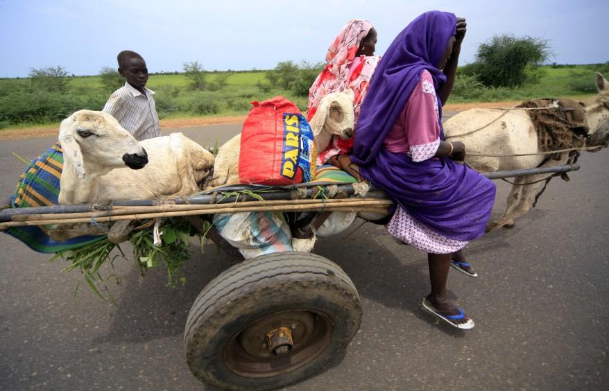 """Sudan Blue Nile State Conflict"""