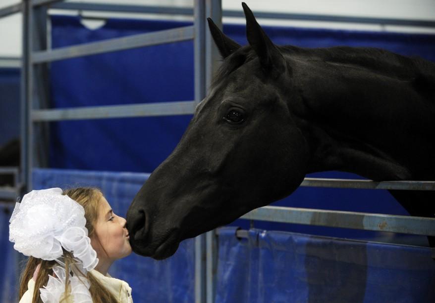 """Russia Horse"""