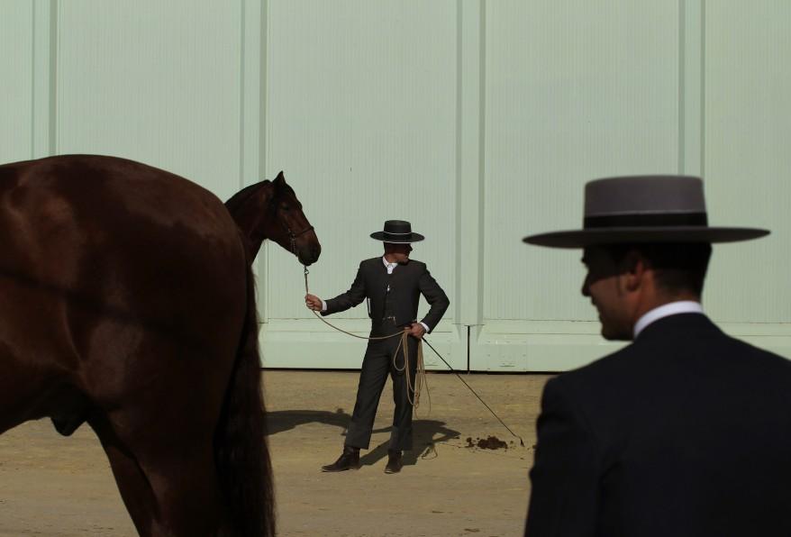 Andalusian Horsemen Seville