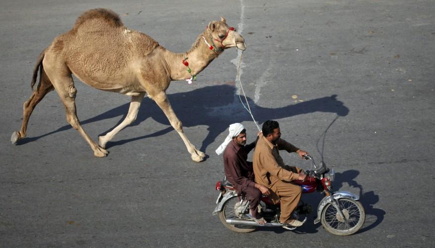 """Pakistan Eid"""