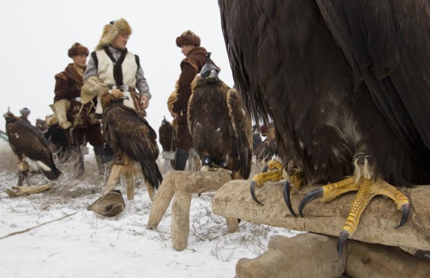 Almaty Kazakhstan Hunting