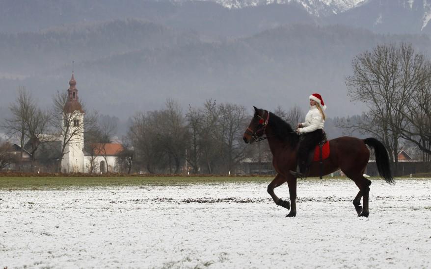 """""""Slovenia Horse Blessing"""""""