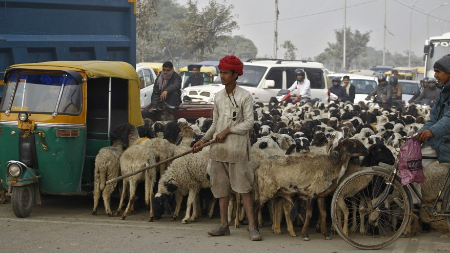 """India Traffic"""