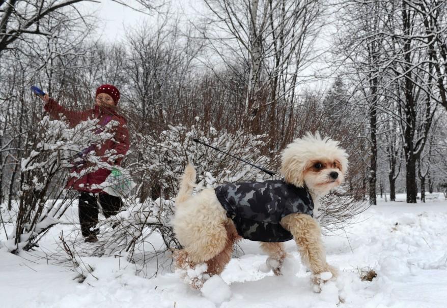 """""""Belarus Weather"""""""