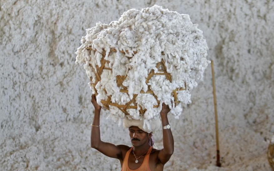 """""""India Cotton"""""""