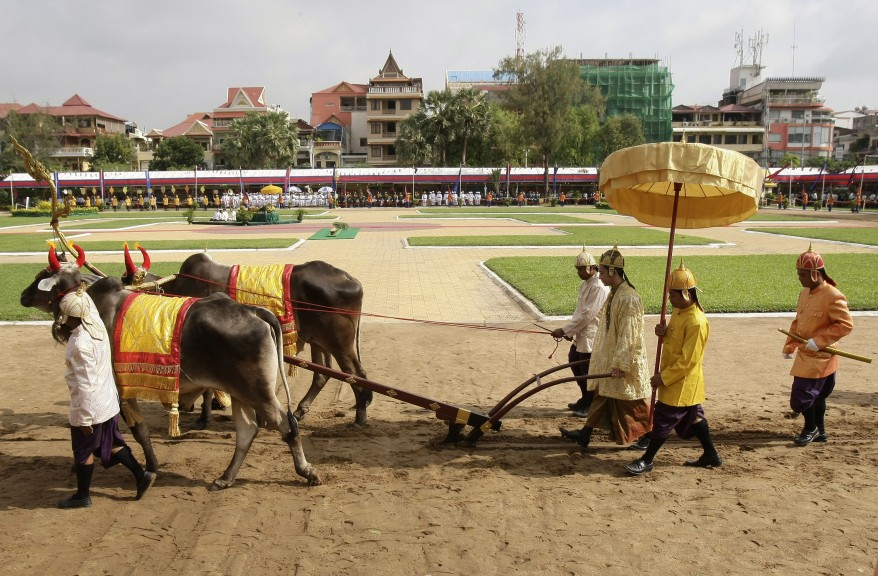 """Cambodia Royal Plowing"""
