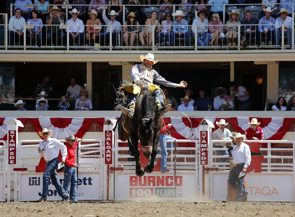 Calgary Rodeo Rider