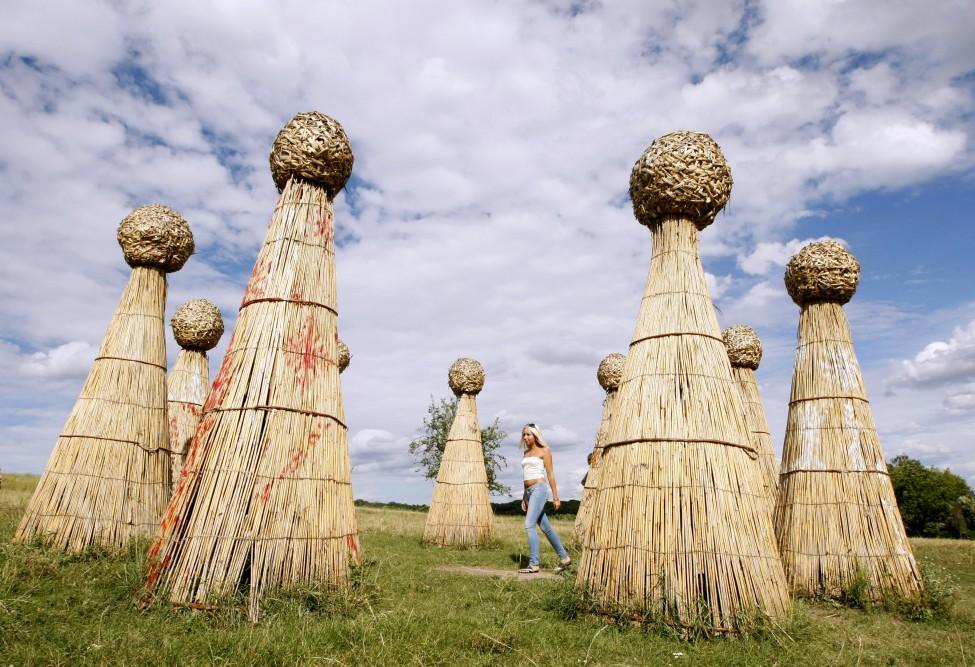 Ukraine Cane Images