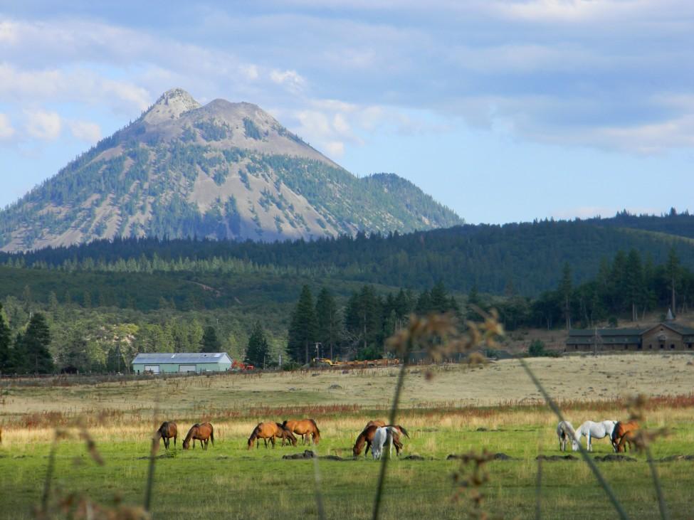 Mt Shasta California