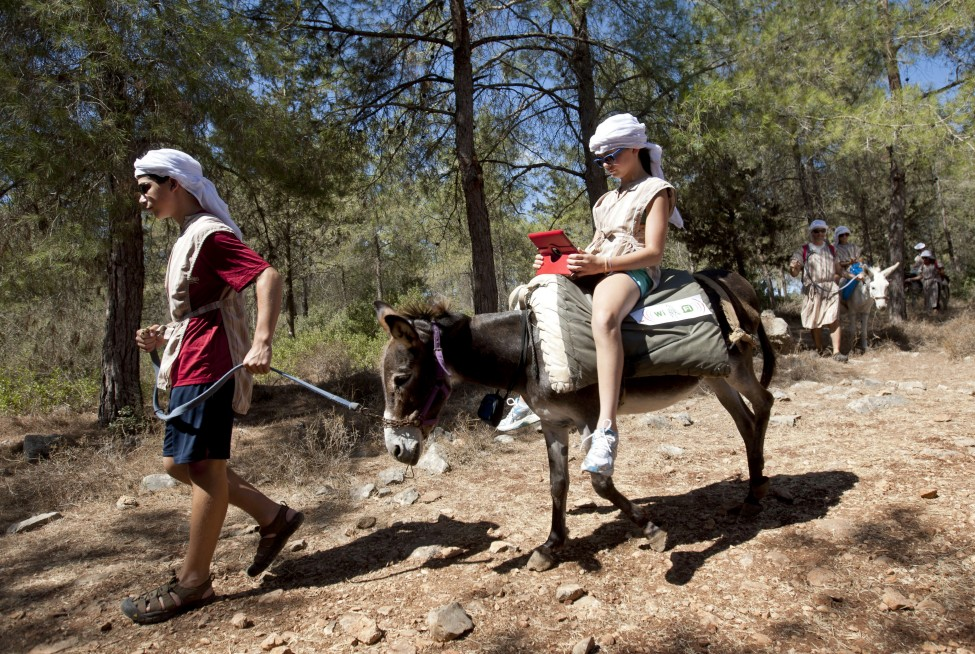 Israel Donkey Wi-Fi