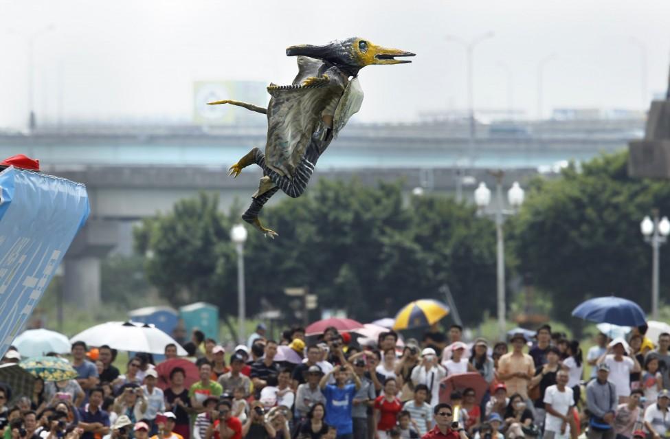 Taiwan Birdman