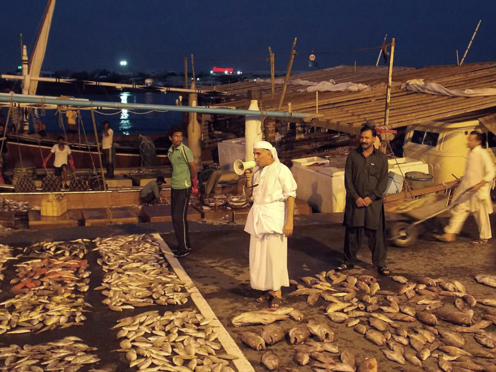 UAE Fish Auction
