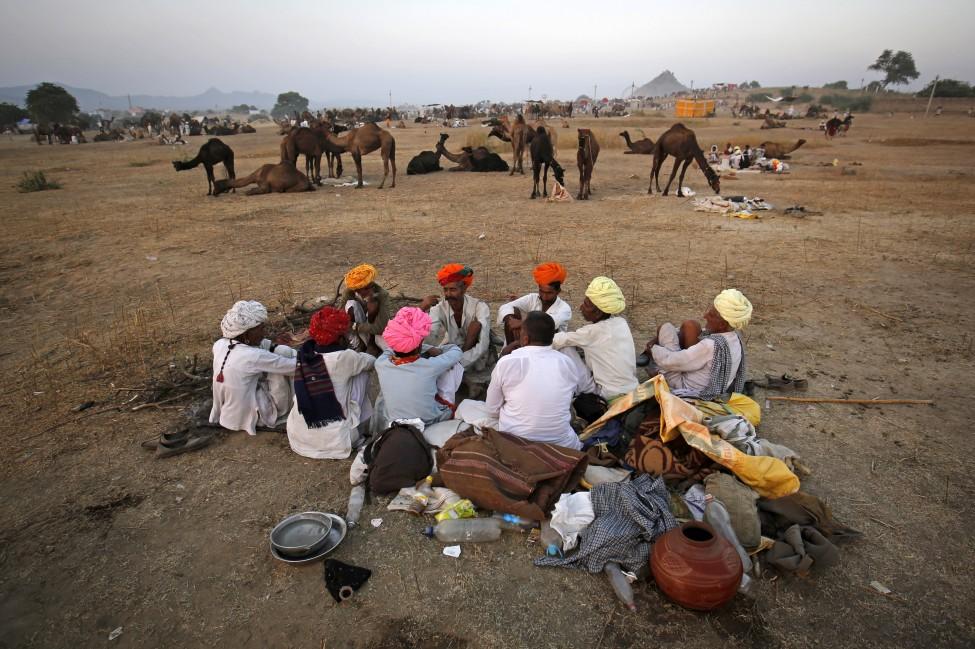 Camel herders in Rajasthan