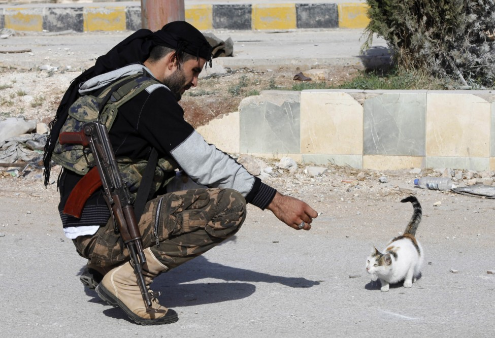 Syria Conflict Animal