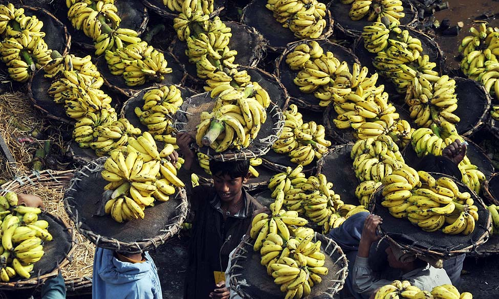 Pakistan Banana Vendors