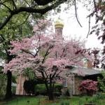 """Православная Пасха в Вашингтоне (Фото: Алиса Крутовская, """"Голос Америки"""")"""