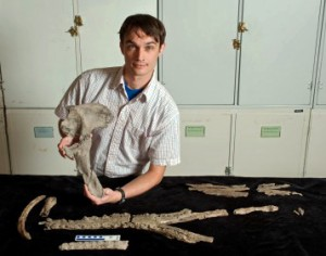 University of Florida researcher Alex Hastings displays a pelvic bone of Acherontisuchus guajiraensis, a 60-million-year-old ancestor of crocodiles discovered at the same site in northeastern Colombia as Titanoboa, the world's largest snake. (Photo by Kristen Grace/ Florida Museum of Natural History)