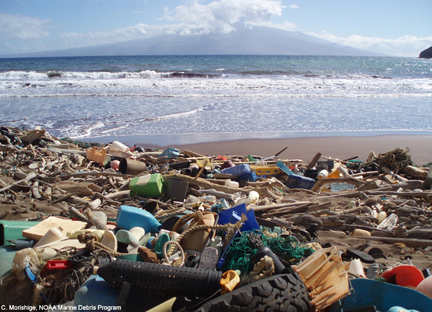 An example of marine debris that washed up on a shore (Photo: NOAA Marine Debris Program)