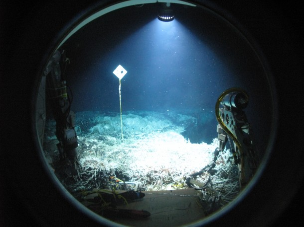 A hydrothermal vent field at Axial Volcano (submarine volcano and seamount) as seen through the porthole of the submersible Alvin. (Photo: Mark Spear/WHOI via NSF)