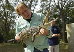 "Joe Wasilewski works with a captured Nile crocodile, caught near his Homestead, Fla., home. State wildlife officials have given their agents a rare order to shoot to kill in the hunt for a young and potentially dangerous Nile crocodile loose near Miami. ""They get big. They're vicious. The animals are just more aggressive and they learn that humans are easy targets,"" says Wasilewski, a reptile expert and veteran wrangler. (AP)"