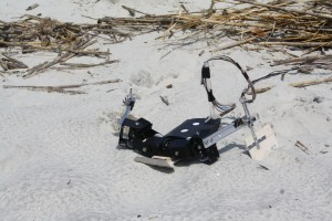 """Flipperbot"" makes its way through sand.  (Nicole Mazouchova)"