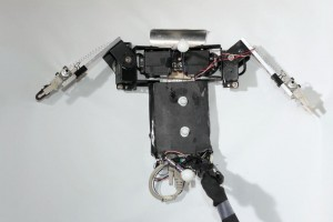 "Top view of ""Flipperbot"" (Nicole Mazouchova)"