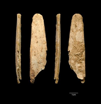 This image shows four views of the most complete lissoir found during excavations at the Neandertal site of Abri Peyrony. (Abri Peyrony & Pech-de-l'Azé I Projects)
