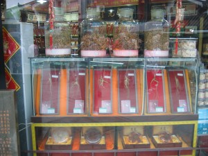 Different kinds of roots used to treat patients with Chinese herbal medicine on display at a Chinese pharmacy (Gary Kleemann via Creative Commons/Picasa)