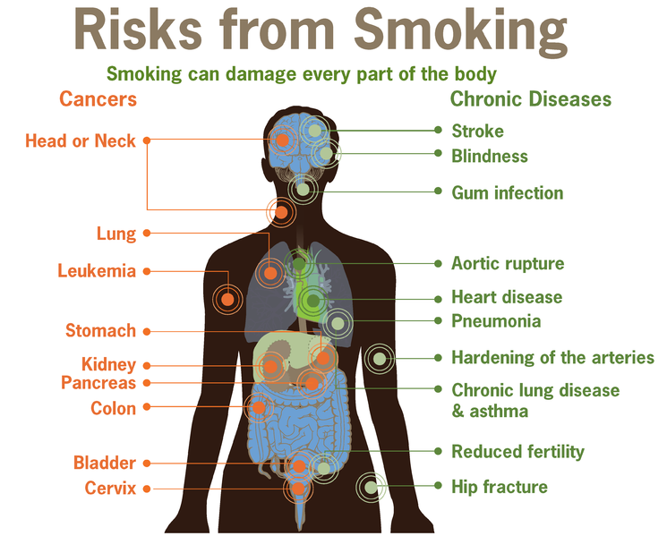 want to quit smoking seek professional help science world health experts say smoking can be hazardous to your health cdc via commons