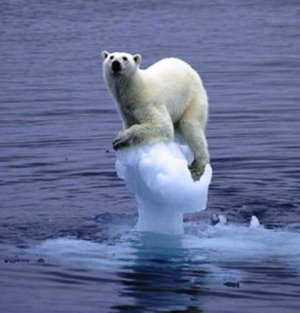 Arctic ice melt impacts nature (Agrant141 via Wikimedia Commons)