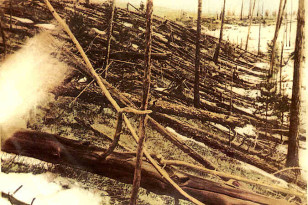 Trees were knocked down and burned over hundreds of square km by the Tunguska impact event. This image was taken in May 1929 during the Leonid Kulik expedition (Leonid Kulik/Wikimedia Commons)