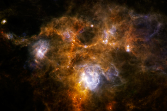 The European Space Agency's Herschel Space Observatory recently discovered an a unique ring of material within a giant cloud of gas called NGC 7538. Clumps of material that have gathered within the cloud may one day produce, what some astronomers think will be a number of collasal stars. June 12, 2014 (ESA/NASA/JPL-Caltech/Whitman College)
