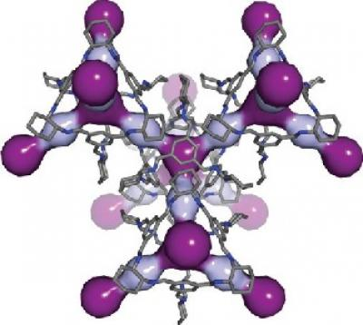 In this computer simulation, light and dark purple highlight the cavities within the 3D pore structure of CC3. (Nature Materials 2014)