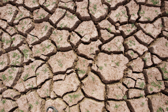 Here's a shot of the cracked ground that once held water at the Maria Cristina reservoir near Castellon, Spain.  Spain's south-east region is suffering its worst drought that followed its driest winter in 150 years.  (Reuters)