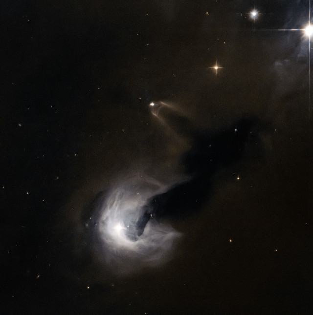 NASA and the European Space Agency released this image on August 25, 2014, taken by the Hubble Space Telescope that shows a star, known as SSTC2D J033038.2+303212, in its early stages of life being flanked by a dark nebula called Dobashi 4173. (© ESA/NASA)