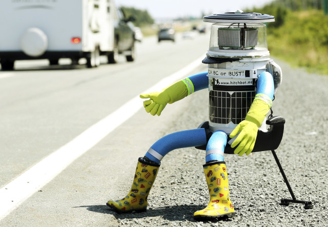 HitchBot, an anthropomorphic robot is shown here thumbing for a ride on Highway 102, just outside of Halifax, Nova Scotia, as it begins a 6,000 kilometer cross-country journey to Victoria, British Columbia.  HitchBot's owners are actually conducting a social experiment to see if drivers will actually stop to pick up the hitchhiking robot and drop off it off at its destination in one piece. (Reuters)