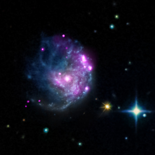 The Chandra X-ray Observatory imaged a newly discovered cosmic object in the galaxy NGC 2276.  The object pictured in this photo released on 2/24/15 may help provide answers to some long-standing questions about how black holes evolve and influence their surroundings.  (NASA/CXC/SAO/M.Mezcua/INAF/A.Wolter)