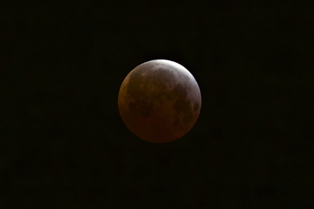 Here's a view of the shortest lunar eclipse of the century as seen from the Echo Park district of Los Angeles on 4/4/15.  (AP)