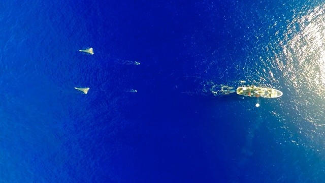 The Ocean Cleanup's Mega Expedition mothership R/V Ocean Starr is shown here deploying the two 6 meter-wide 'mega nets', two 'manta trawls', and its survey balloon with camera at the center of the Great Pacific Garbage Patch. ((C) The Ocean Cleanup/Skyframes)
