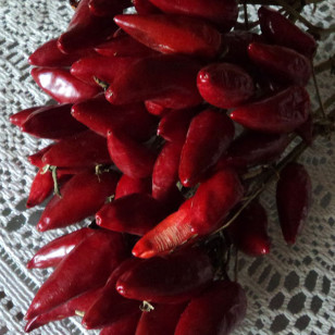 Red chili peppers (Nicholas Gemini via Wikimedia Commons)