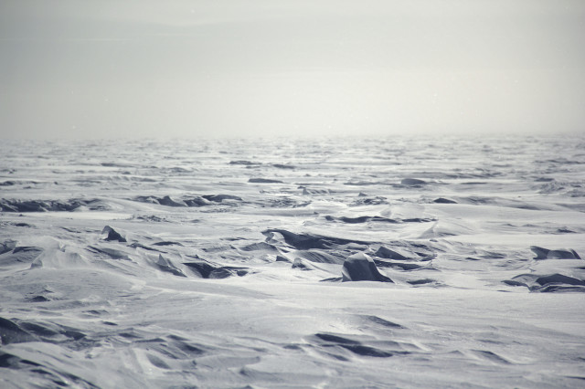 Strastrugi snow formations on the Antarctic Plateau. (Photo by Hunter Davis)